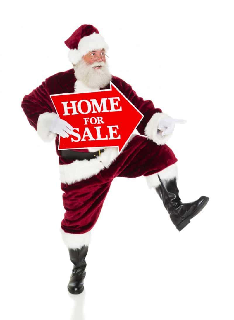 For Sale Santa