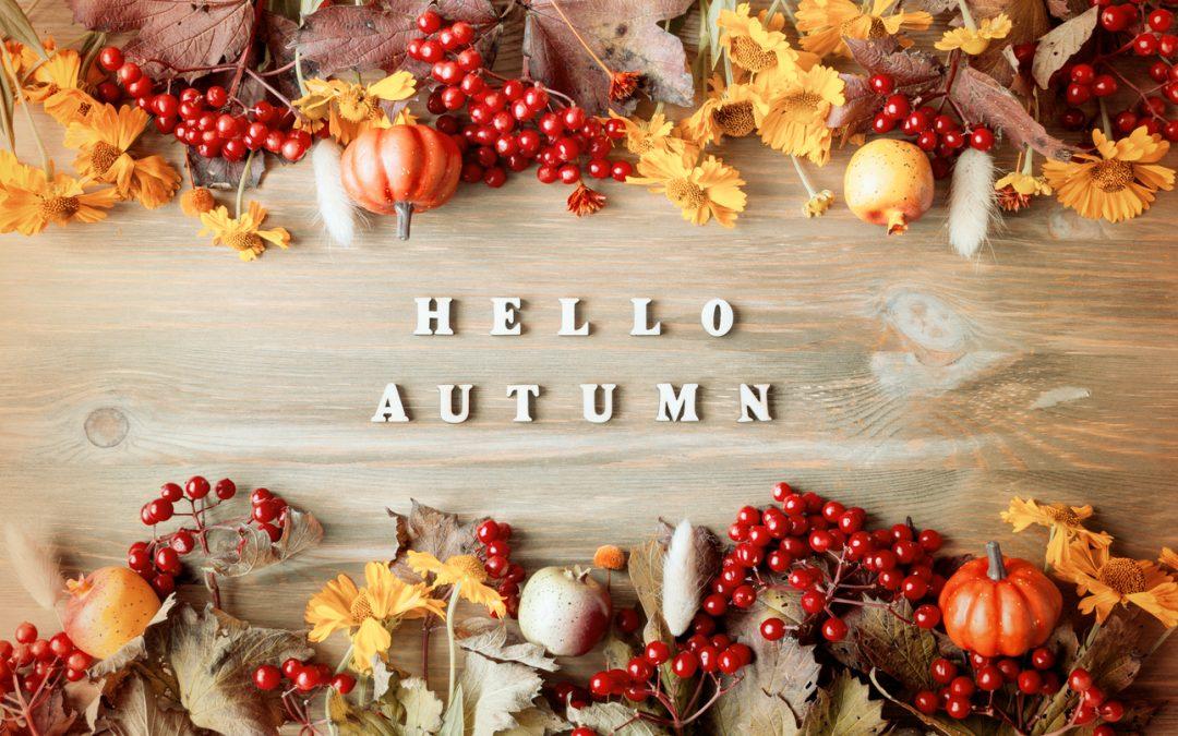 """Hello Autumn"" 4 Open Houses, Friday & Saturday"
