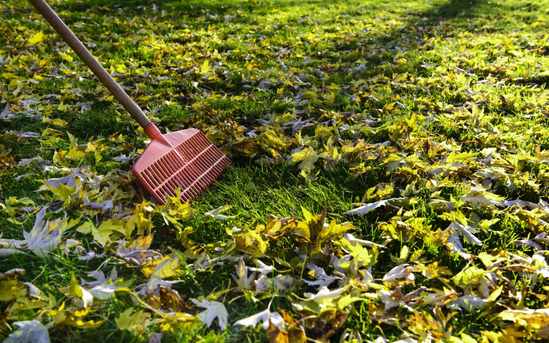 Time For Fall Property Maintenance