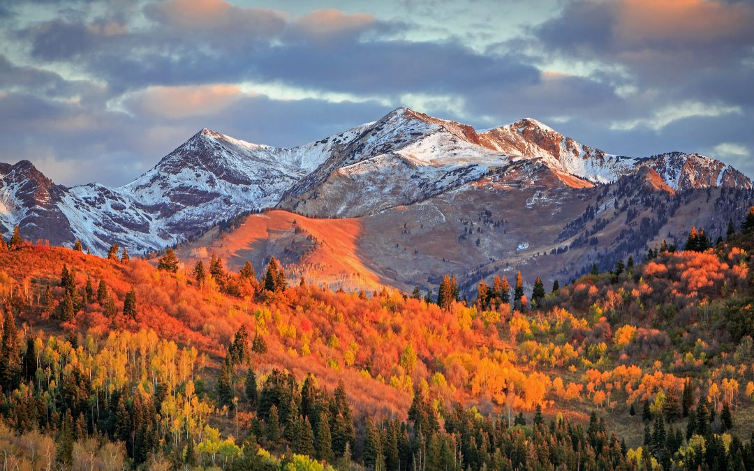 Fall In Love With Utah & Our Luxury Homes